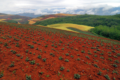 Weng photography the amazing red soil of dongchuan for Soil of india